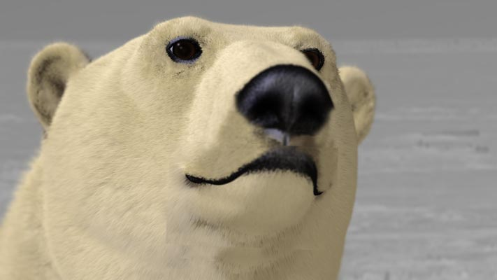 http://www.olga-ok.de/Forum_Zoologist/bear_korrektur.jpg