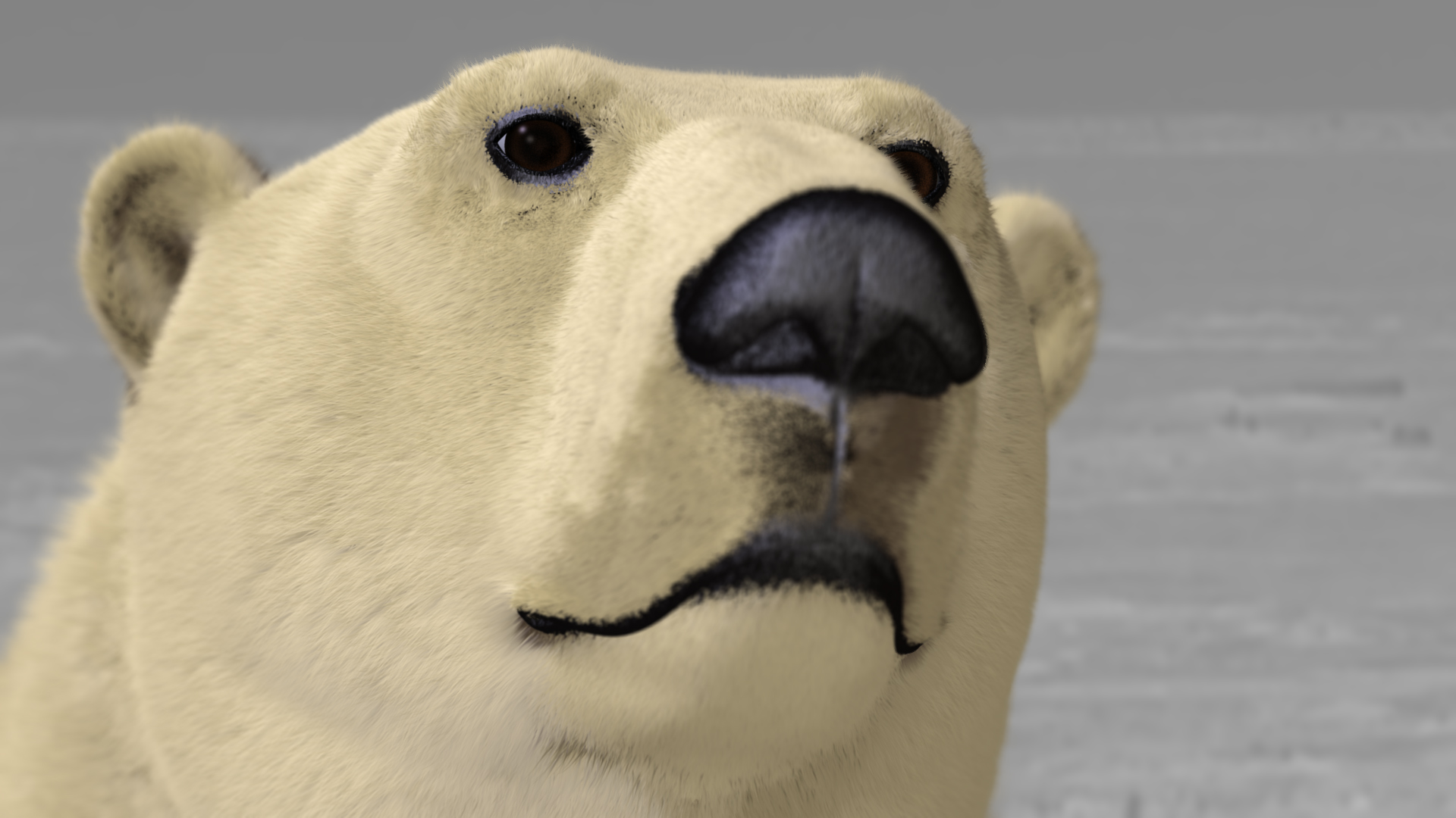 http://www.olga-ok.de/Forum_Zoologist/bear_original.jpg